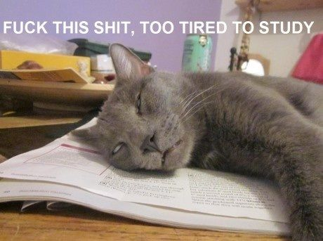 20111202233156_to tired to study.jpg