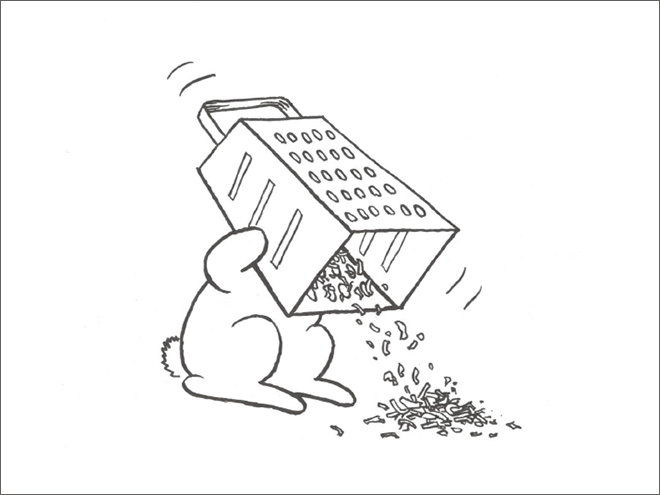 funny-bunny6.png